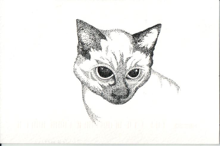 Kitten - Pointilism