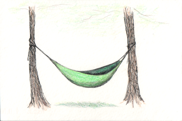 Hammock tied to two trees