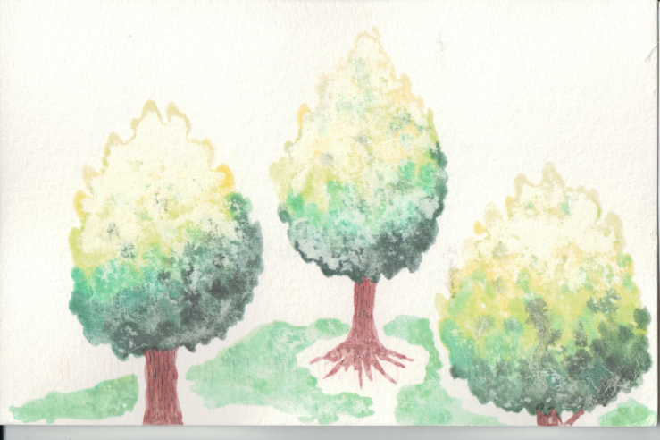 Three trees painted in colour